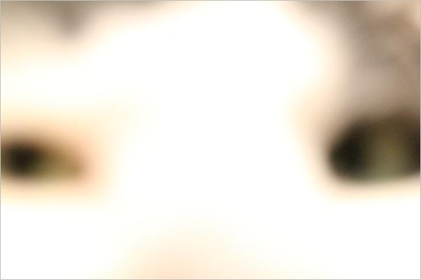 a0198826_22123170.jpg