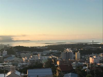 最終日の朝 海藻日記5 - 平洲中NOW29