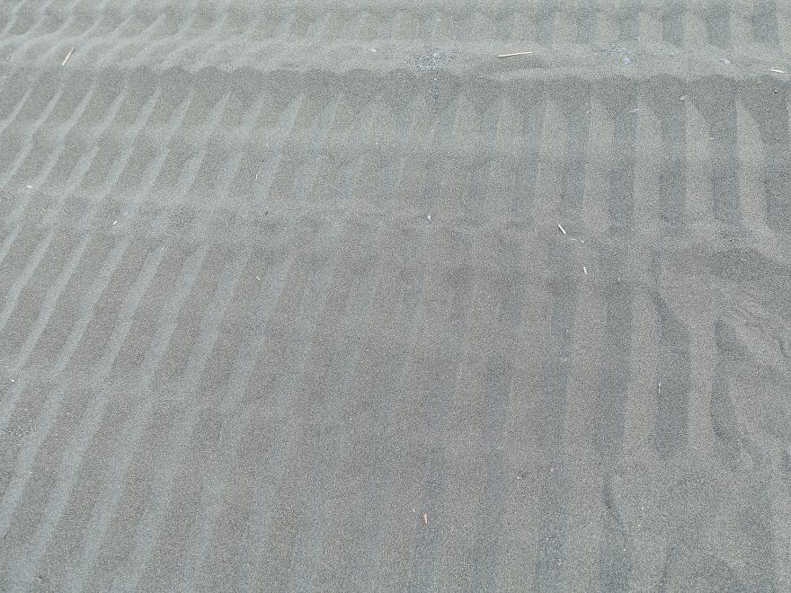 a0354807_20103323.jpg