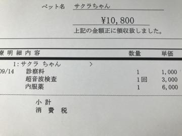 a0000519_194908.jpg