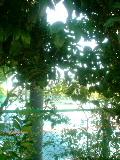 c0315548_08175730.jpg