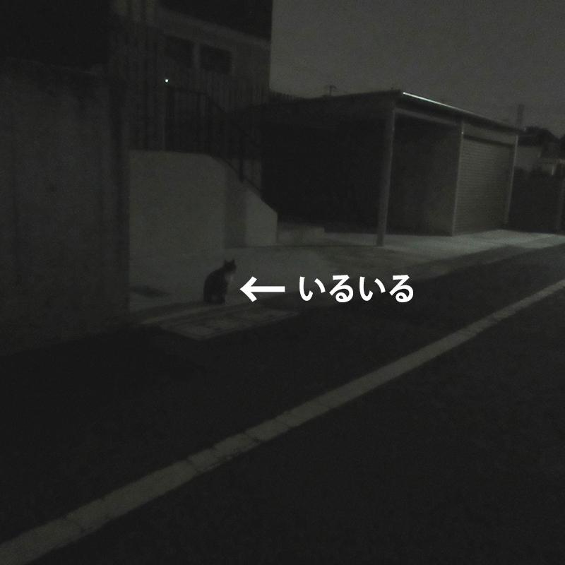 c0211810_11514365.jpg