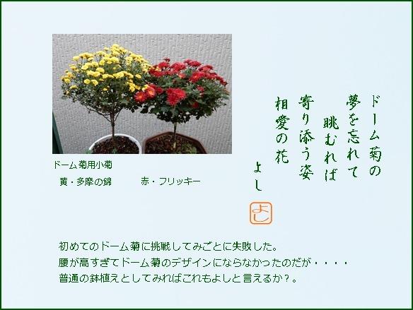 e0033229_18321251.jpg