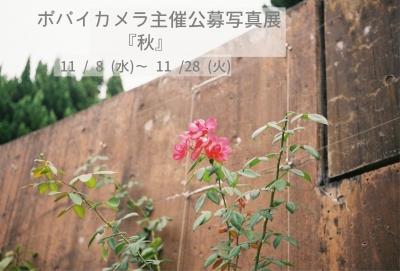 c0299360_318449.jpg