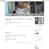 CRAFT の勉強会 - 猫の手通信・日替り定食