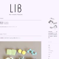 instagram - LIB hairstudio blog