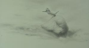 霧・流れ・石・ヤマセミ - 『ヤマセミの谿から・・・ある谷の記憶と追想』