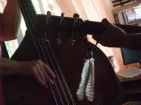 昼下がりセッション Bluegrass in 大家さん's House - Hawaiian LomiLomi  ハワイのおうち 華(レフア)邸