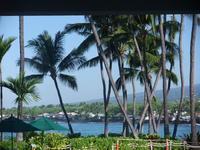 新年お初 フラレッスン in Outrigger Hotel - Hawaiian LomiLomi  ハワイのおうち 華(レフア)邸