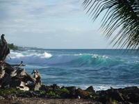 1.15 Big wave in Kona - Hawaiian LomiLomi  ハワイのおうち 華(レフア)邸