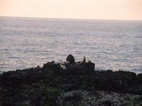 刑務所暮らし 服役3ヶ月 in Hawaii - Hawaiian LomiLomi  ハワイのおうち 華(レフア)邸