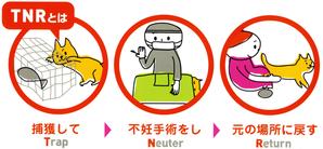 地域猫活動(TNR) - ねころん*