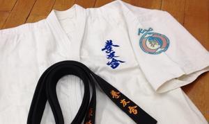 トップページ - 実戦カラテ 大阪拳友会