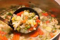 春野菜salad/南仏/愛犬 - Changun-kun