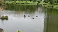 藤田八束の水産業対策@不漁が深刻化する日本の水産業・・・・これからの水産業、水産経済 - 藤田八束の日記