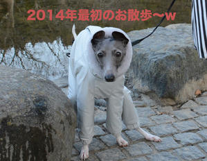 2014.01.01 朝 - イタグレ ジークの裏ブログ