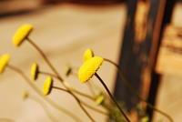 もうすぐ春です。 - Cafe 風花<木曽・奈良井宿>