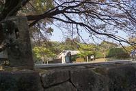 藤田八束の鉄道写真@春を待つ鉄道写真・・・郷土歴史と遺産を訪ねて、飫肥城 - 藤田八束の日記