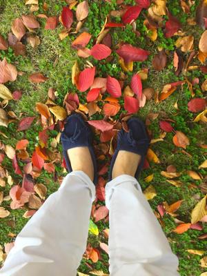 秋色 - わたし日和。