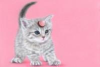 2月のデスクトップピクチャ(壁紙)バレンタイン特集!! - junya.blog(猫×犬)リアリズム絵画