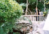沖縄の慰霊の日にあたって - 楽なログ