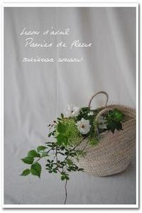 卯月:はなの会 - つきくさ帖   草花とおして、毎日とくべつ