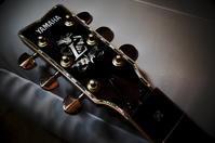 ギター座談会 - 無題