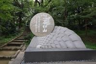 真田丸 第50話「最終回」 ~日本一の兵(ひのもといちのつわもの)~ - 坂の上のサインボード