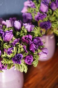 「冬の花と遊ぶ♪プチ集中レッスン」開催のご案内 - Cahier de RAFFINEE