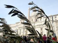 """♡""""受難の主日について♪"""" ~ Domenica delle Palme ~ - ROMA ~ 世界遺産の街 ・ローマ  ふぉとぶろぐ ~"""