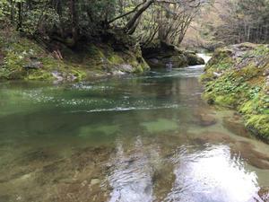 2016 4月の終わり 春の岩見川 - Peaceful Life fishing&sk8