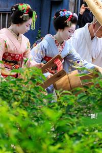 祇園放生会/ぎおんほうじょうえ(祇園甲部豆純さん、豆こまさん) - 花景色-K.W.C. PhotoBlog