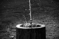 水しぶき - FUJIFILM Xシリーズで撮るフォトブログ