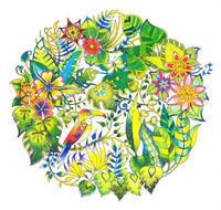 続々店頭に並び出しました!ジョハンナ・バスフォード新刊『ふしぎな王国』 - オトナのぬりえ『ひみつの花園』オフィシャル・ブログ
