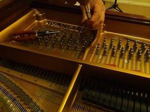 家でのこまごま - Rayのピアノ&バイオリン