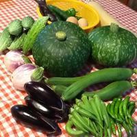 実りの夏野菜 - 小さな幸せ 田舎暮らし chiyoko