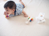 木のおもちゃ - ゆらゆら blog