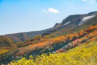 高原沼へようこそ - Nature Photo 森の声