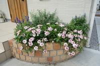 9月末 お庭の様子 - Petit Bonheur