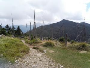久し振りの山 - 山登りは 一期一会