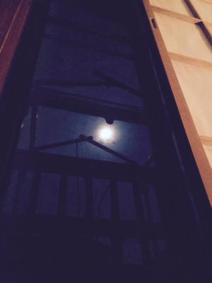 十五夜 - Ninaのうたかたの日々
