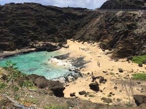 スペ in ハワイ その6 宮原 - SPECIAL OTHERS blog