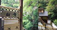 宝塚 自然の庭と和食料理 山幸(やまこう) - my story***