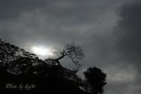 空(雲) - 癒しの空間