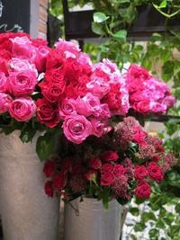 妄想しまくり、Autumn feeling bouquetをさり気なく持って… - Flower Supplement - Flowering for the comfort living ------- 日々の生活を、心を豊かにする花の世界