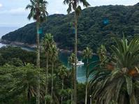 海辺の夜ご飯。(1609再訪)──「下田東急ホテル フェニックス」 - Welcome to Koro's Garden!