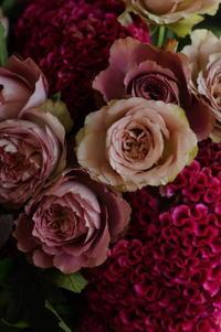 Bouquet de Photo 9月 Ⅰ - MY SELECTION