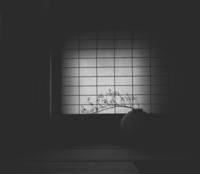京都をぶらり - DA・KA・RA・KO・SO