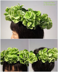花冠をかぶって、なんて素敵な笑顔なんでしょ……花っていいね - Flower Supplement - Flowering for the comfort living ------- 日々の生活を、心を豊かにする花の世界
