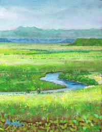 初夏の釧路湿原 - ナオキブログ